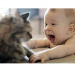 Babies Laughing Hysterically at Cats
