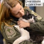 Little Houdini is Rescued from Truck by Caring Animal Officers