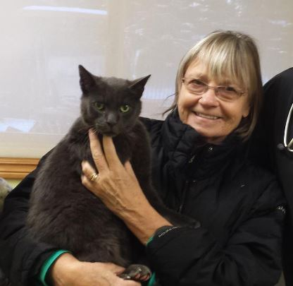 Missing Cat Slate is Found After 4 1/2 Years