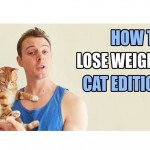 How to Lose Weight: Cat Edition!