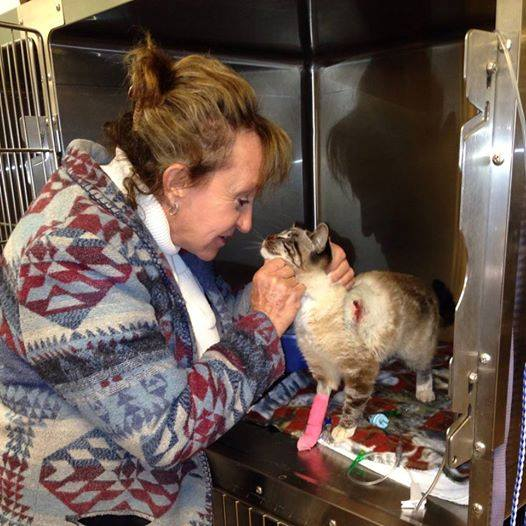 Quiver greets her friend and caretaker Kris Neal Friday morning at the animal hospital.