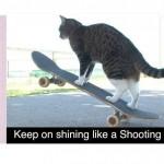 The Amazing Didja in CAT Super Skateboarding Adventure!