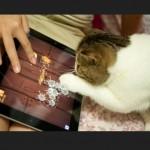 Cats Playing Fruit Ninja