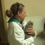 Veteran's Rescued Cat Dori is Adopted by Another Veteran's Family