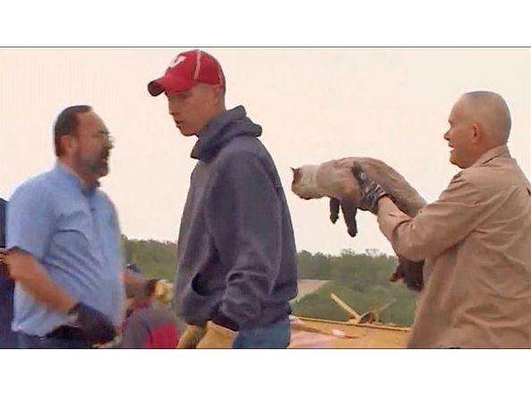 Deceased Man's Dad Finds Family Cat in Arkansas Tornado Rubble