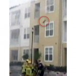 Cat Jumps to Safety from Burning Building