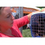 Woman Finds Her Missing Cat at Adoption Event After 5 Years