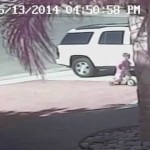 California Cat Rescues 4 Year Old boy from Dog Attack