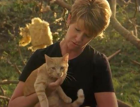 Woman Finds Her Family's Cat in Nebraska Tornado Debris