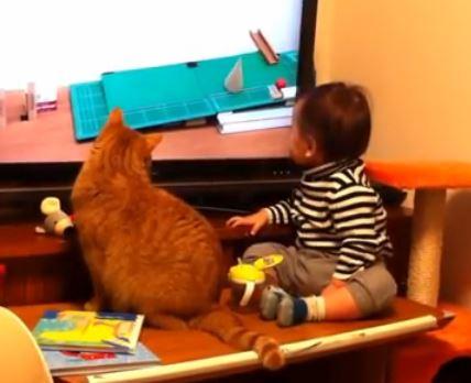 Cat and Baby Watching Rube Goldberg Machine on TV