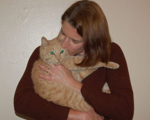 Cat Walks 12 Miles Back to Old Home After Move