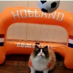 Timo the Cat is ready for World Cup Brazil