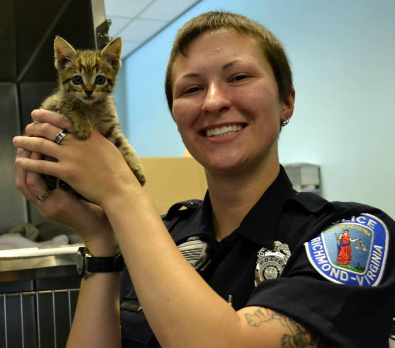 Firefighter Rescues Kitten from Highway Overpass