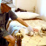"85 Year Old Cancer Stricken Man Reunited with his Cat ""Baby"""