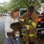 Cat is Rescued from Virginia Townhouse Fire