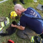 Cat is Rescued Following Garage Explosion