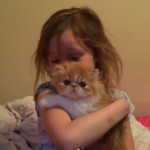 Rescued Persian kitten is best birthday present ever!