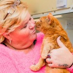 Garfield's Happy Reunion: Cat Missing 7 Years Goes Home