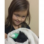 Family Saves and Adopts Injured Kitten Found on Highway