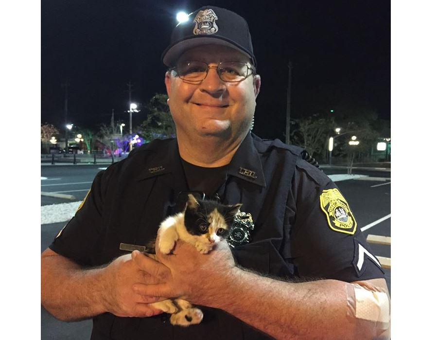 Police officer adopts kitten rescued from storm drain