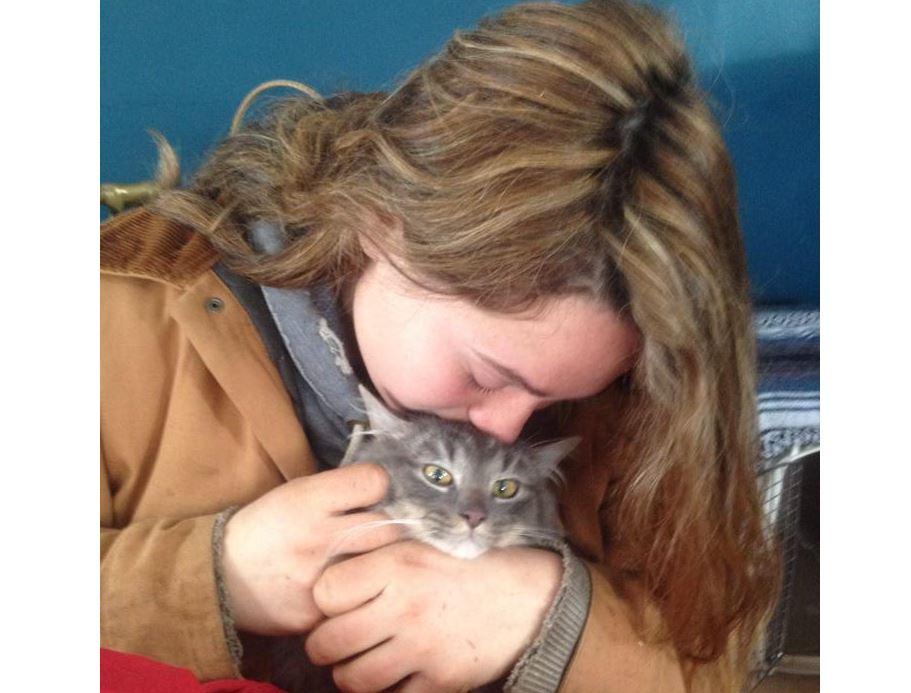 Good Samaritan rescues cat found frozen to the ground