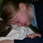 Girl's heartbreak after beloved cat is put down by vet who thought he was a stray