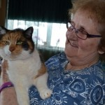 Missing 18 year old cat is found under snow-covered deck after 2 months