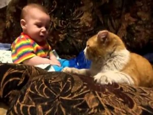 Cat says it's time for baby to go to sleep