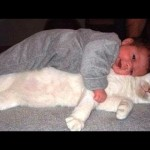 Cats are best babysitters and nannies