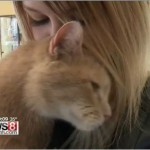Lexi and Dimitri: Missing cat is reunited with his petmom