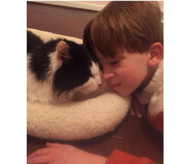 Rescuer reunites autistic 12 year old boy with his missing cat