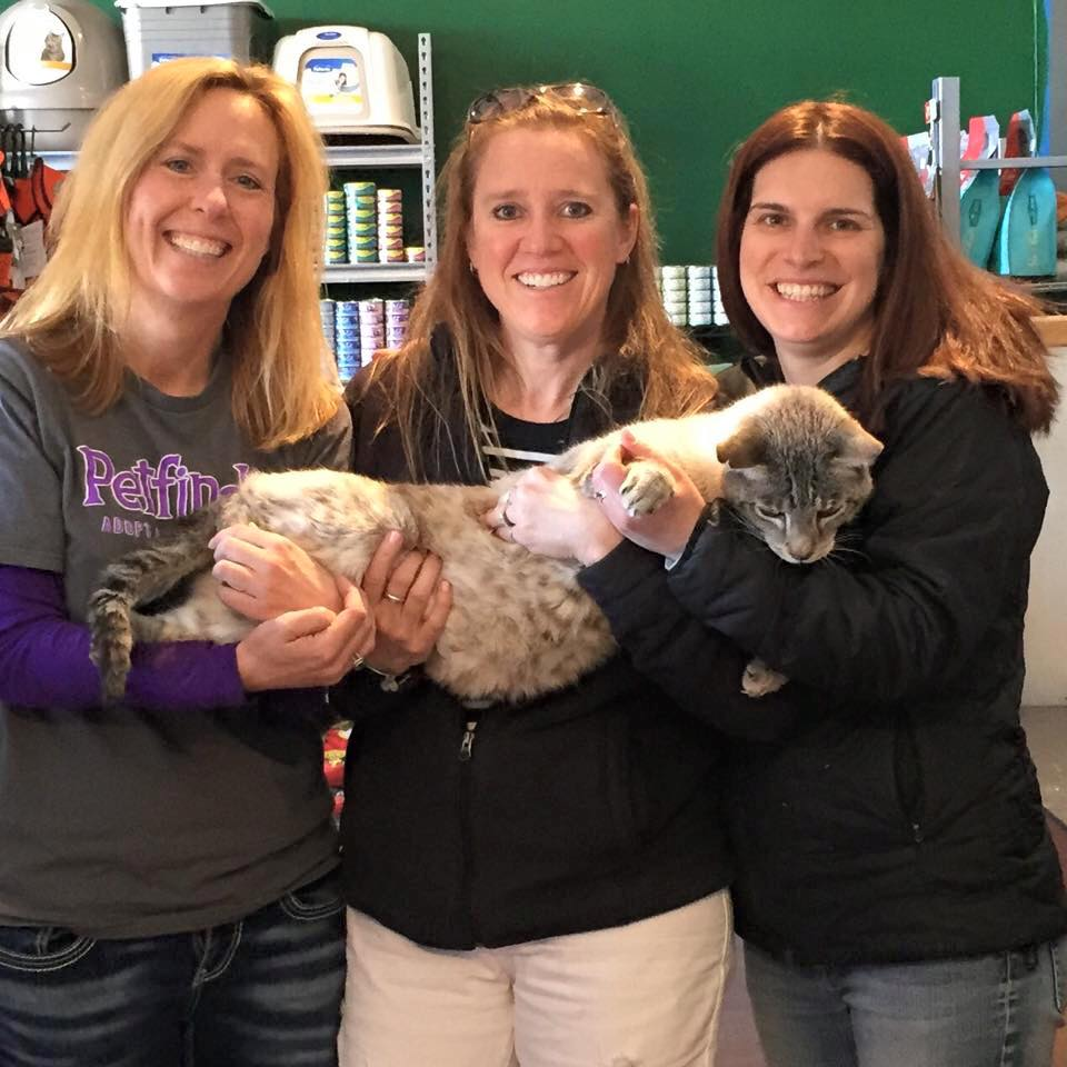 Feb. 7, 2015: The fun ladies of Animal Rescue of the Rockies Cat Casita came for a visit today!