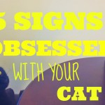 15 Signs You're Obsessed With Your Cat!