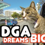 Cat Does Unbelievable Stunt & Trick Compilation – Go Didga!