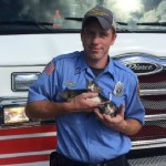 Natchez firefighter rescues litter of kittens found in paper bag