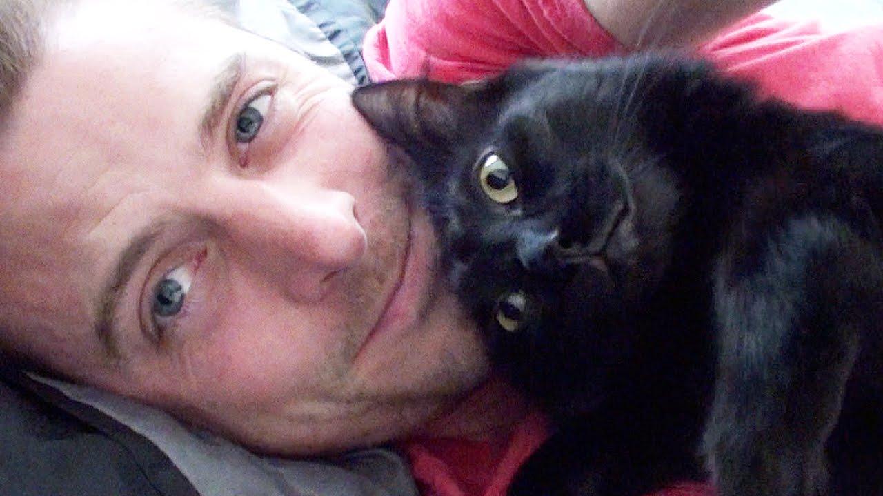cat drools when pet