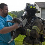 Two cats rescued from house fire