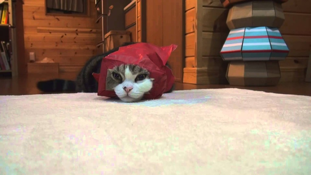 Red paper bag and Maru