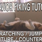 STOP Cats Scratching / Jumping on Furniture