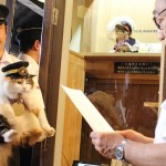 Nitama is sworn in as Stationmaster Cat