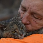 Cat survives California wildfire to be reunited with her family