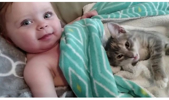 Baby and her kitten waking up after a nap