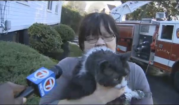 Firefighters rescue woman's cat from house fire