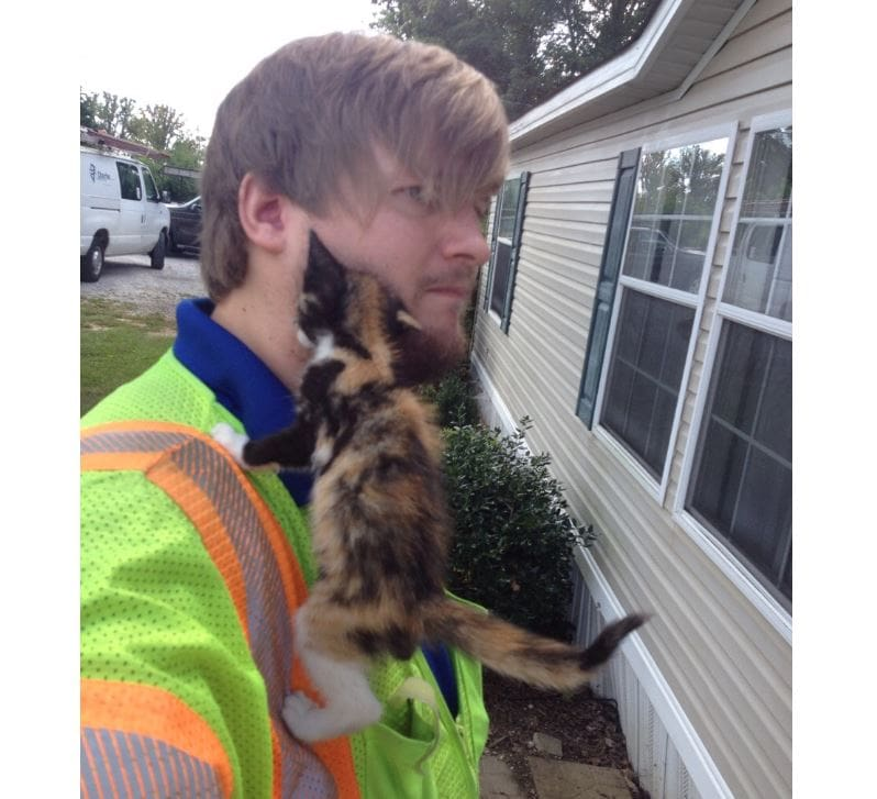 Kitten attaches herself to service guy