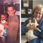 Cat returns to family after 14 years