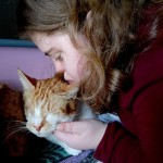 Read to cats program helps young adults and shelter cats