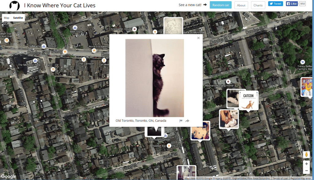 'I Know Where Your Cat Lives' Website Raises Online Safety Awareness