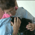 Hospital Allows Cats and Dogs to Visit