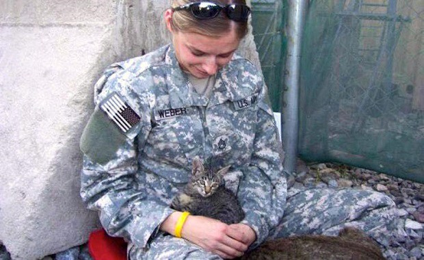 A Soldier's Persistence Pays Off For a Special Needs Kitten