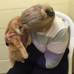 Woman Adopts Senior Cat, Comes Back to Get His Old Friend